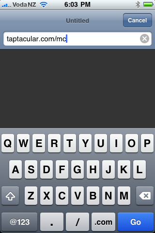 Enter the URL in Safari